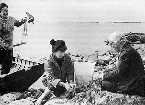 Tove Jansson Il libro dell'estate